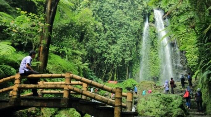Yuk Intip Keindahan Wisata Gunung Lawu