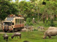 4 Daftar Tempat Wisata di Bali Bersama Keluarga