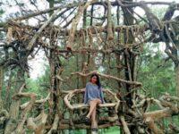 Goa Pinus malang