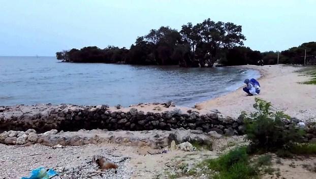 Pantai Labuhan Gresik