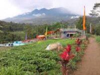 Agrowisata Amanah