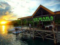 Daftar Hotel Di Raja Ampat Dive Resort