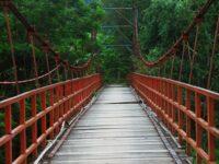 Hutan Wisata Tinjomoyo