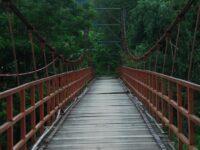 Taman Margaraya Tinjomoyo