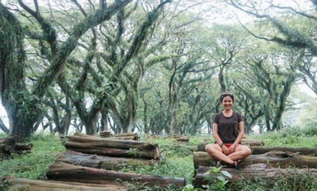 Tempat Wisata Banyuwangi Paling Instagramable