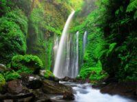 Wisata Air Terjun Di Lombok Terindah