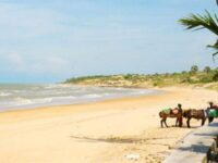 Wisata Pantai Eksotis Di Situbondo yang Tak Boleh Diacuhkan